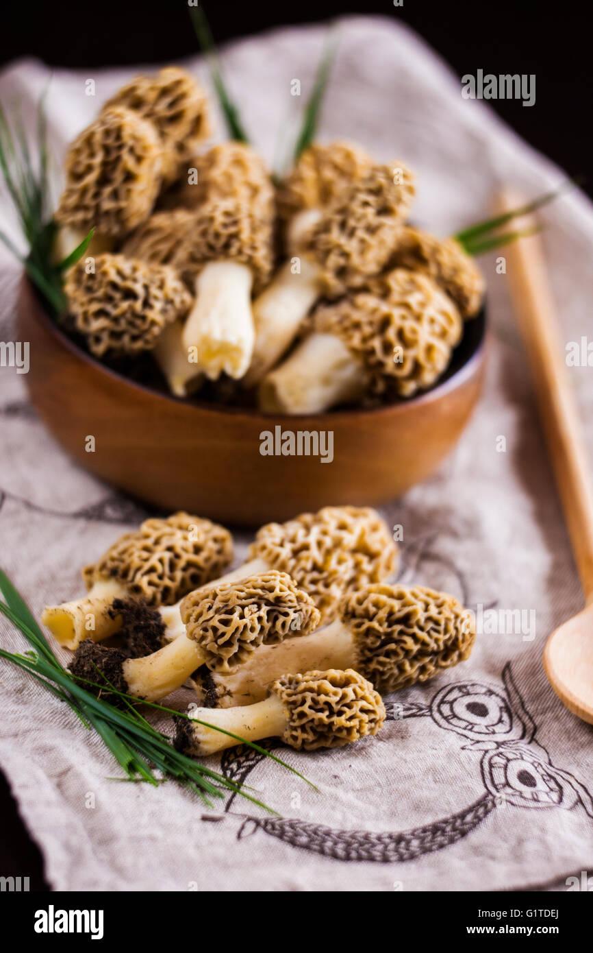 Morel Cuisine   Fine Cuisine Morchella Esculenta Commonly Known As Common Morel
