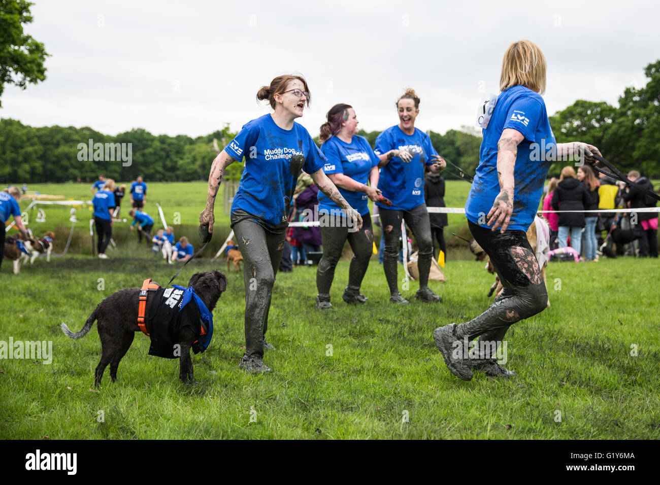 Battersea Dogs And Cats Home Muddy Dog Challenge
