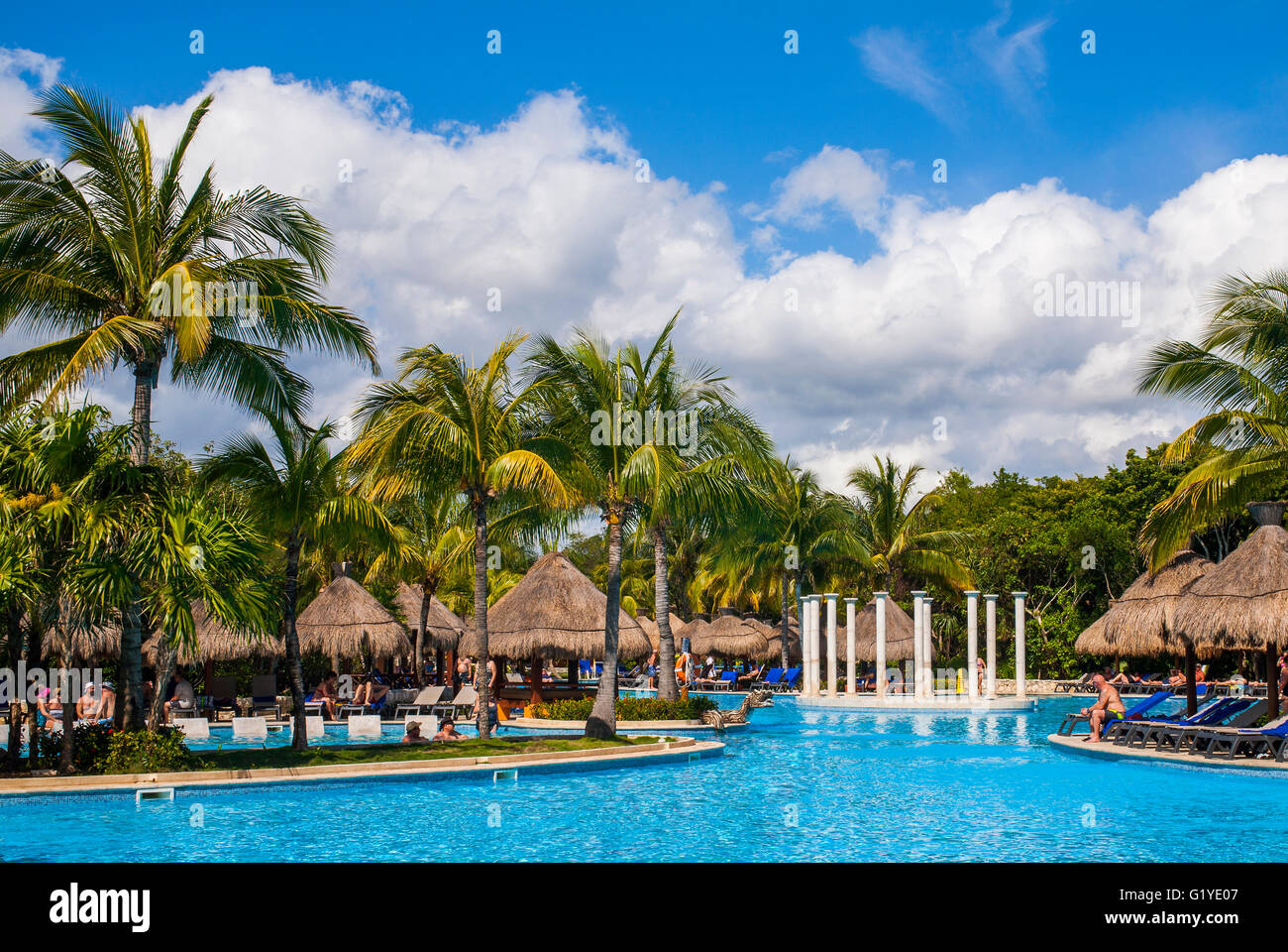 Palm trees swimming pool palm umbrellas iberostar pararisio beach stock photo royalty free - Palm beach swimming pool ...