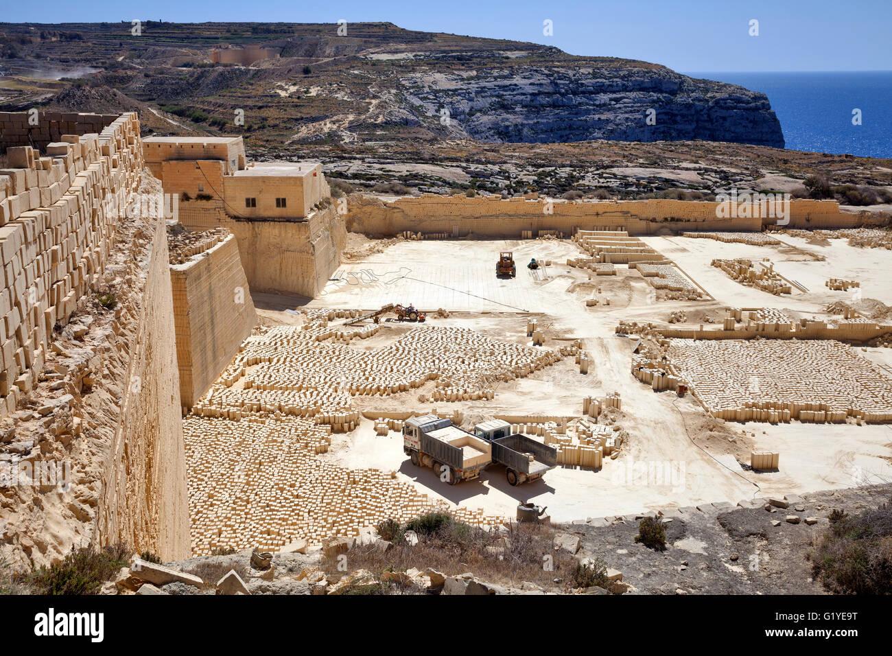 Wild Leek Flowers With Gozo Island Limestone Cliffs In The ...   Gozo Limestone