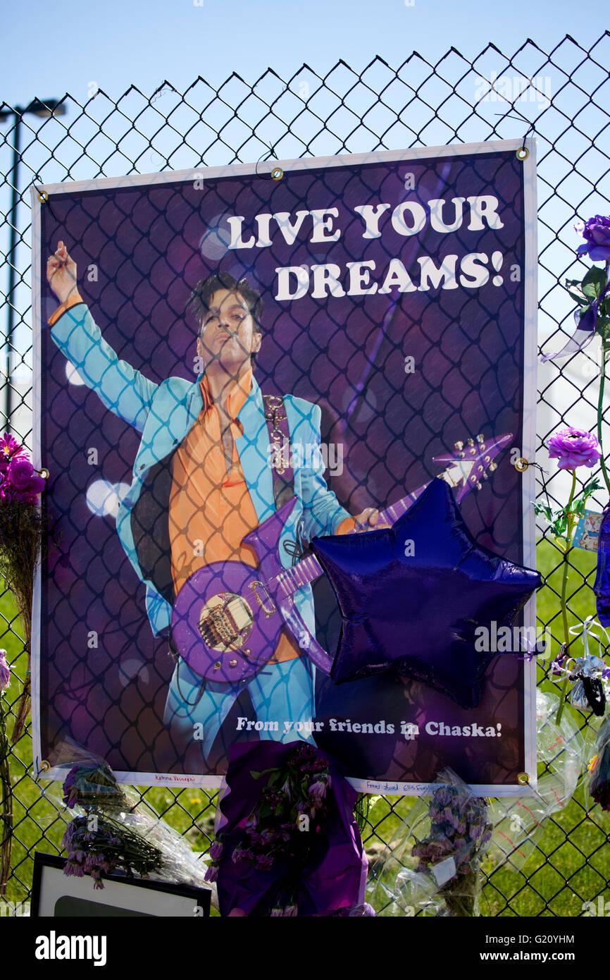 Prince playing his love symbol guitar on a live your dream graphic prince playing his love symbol guitar on a live your dream graphic paisley park studios chanhassen minnesota mn usa buycottarizona