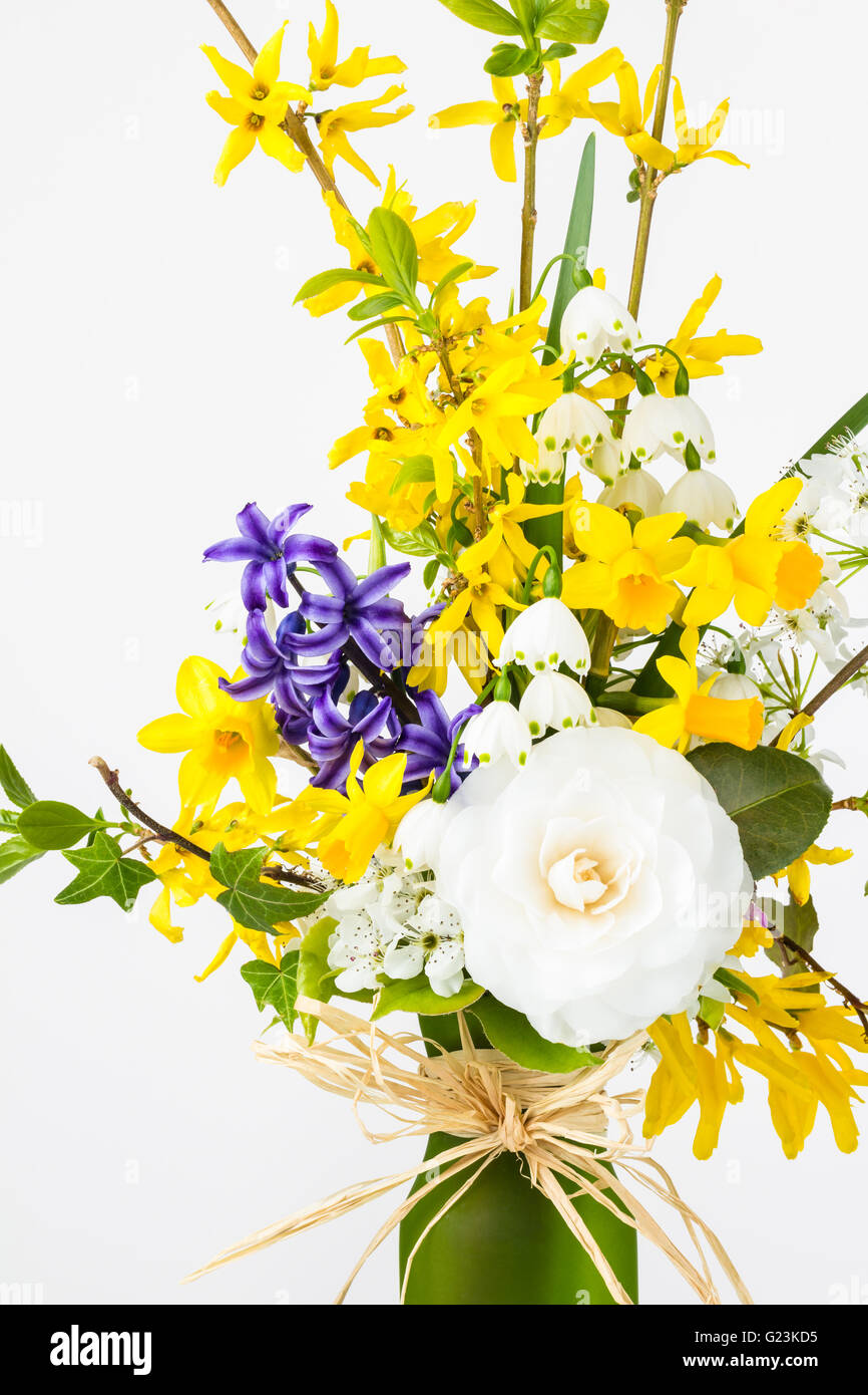 flower arrangement of spring blooms in glass vase forsythia daffodils snowdrops narcissus camellia and ivy - Forsythia Arrangements