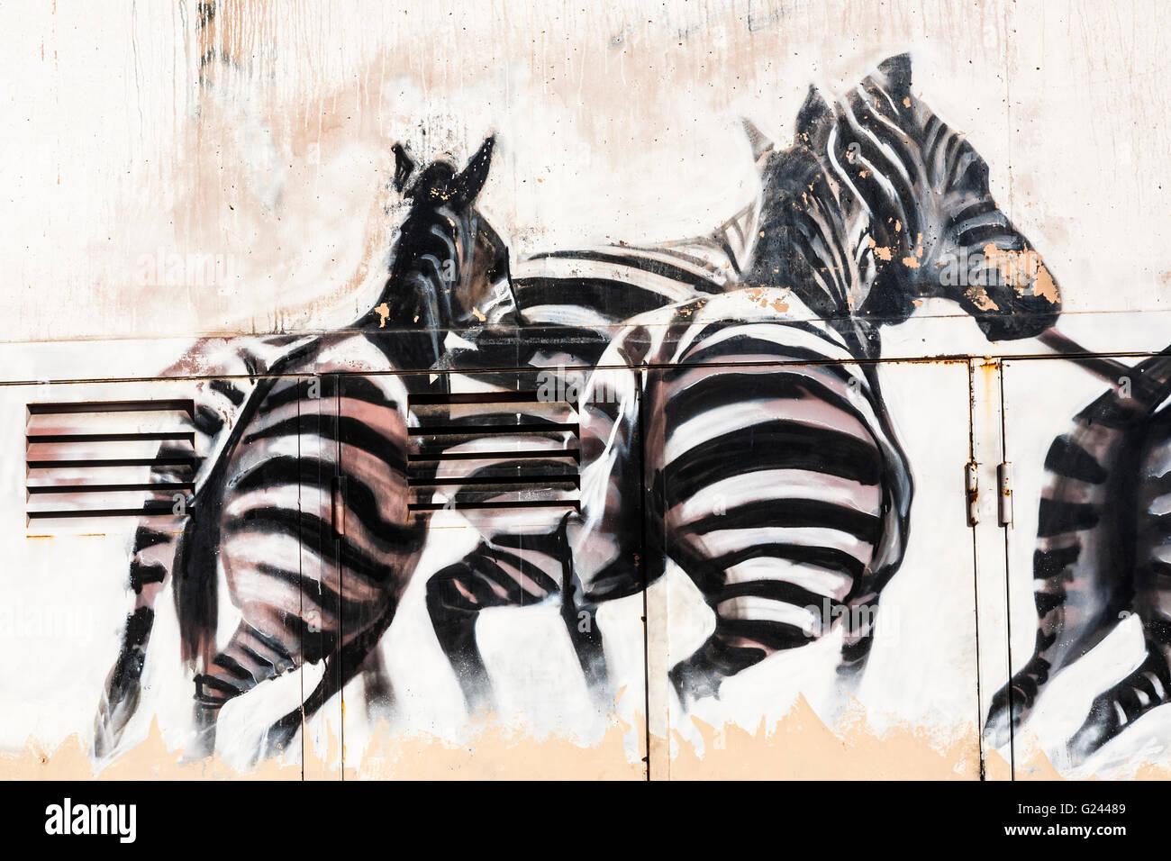 Graffiti wall barcelona - Graffiti Zebra On A Barcelona Wall Catalonia Spain