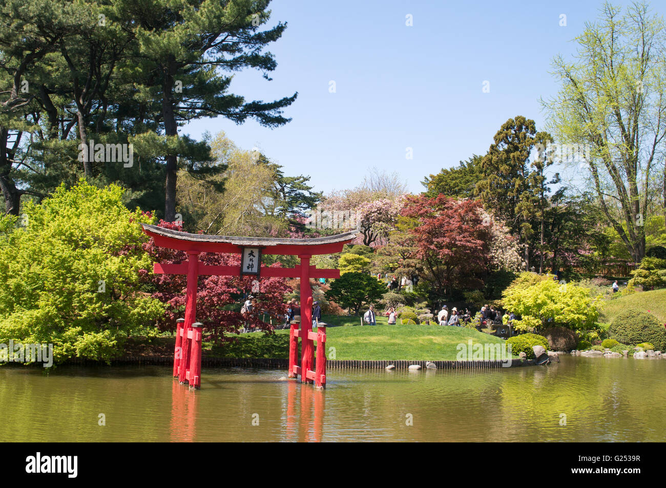 The Japanese Garden At Brooklyn Botanic Garden New York Usa Stock Photo Royalty Free Image
