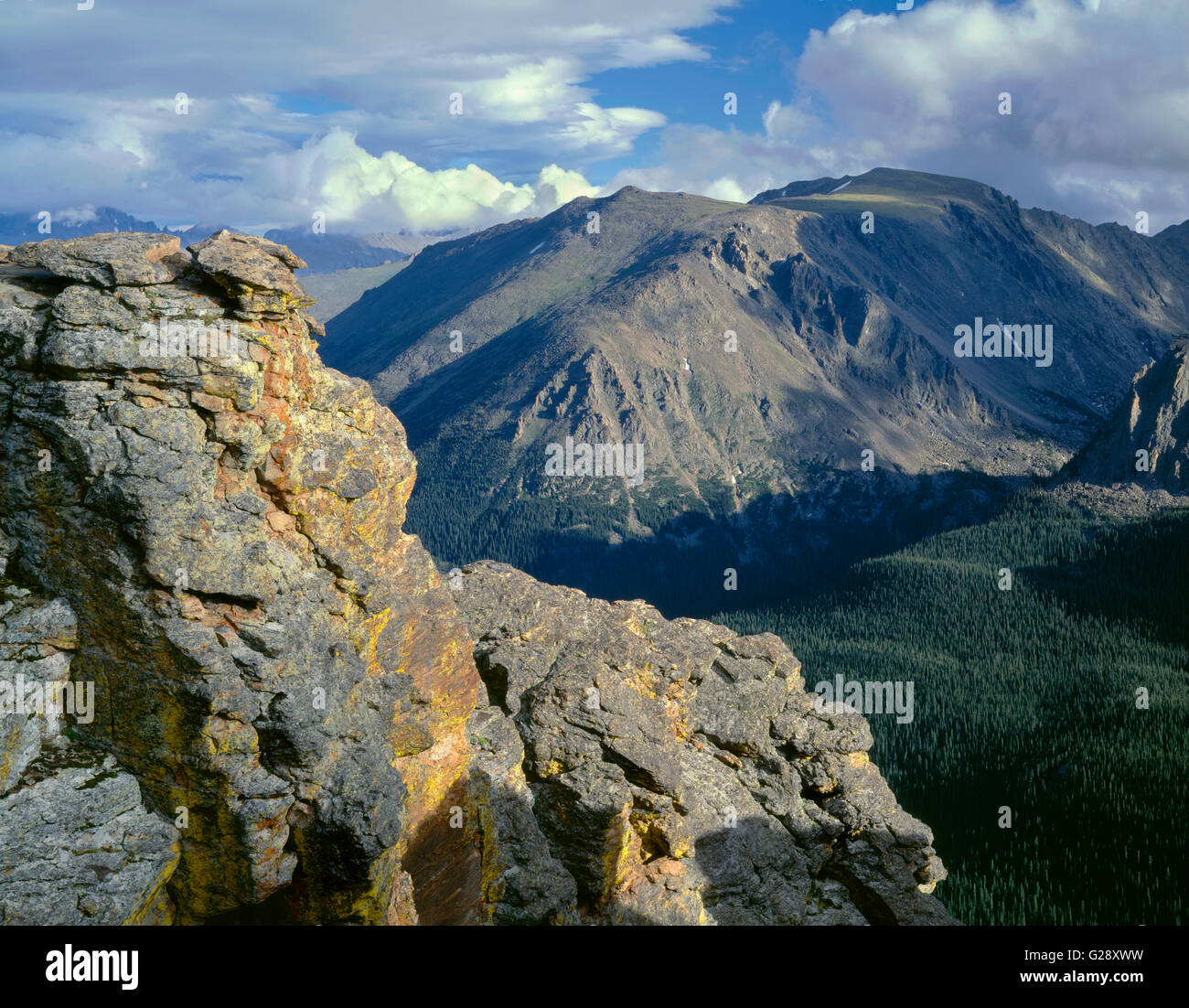 Usa colorado rocky mountain national park lichen covered rocks usa colorado rocky mountain national park lichen covered rocks at rock cut with distant stones peak above conifers sciox Image collections