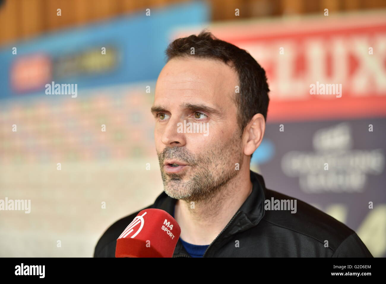 hungarian league team stock photos hungarian league team stock handball coach xavi sabate from the hungarian handball club mvm veszprem at the media call for