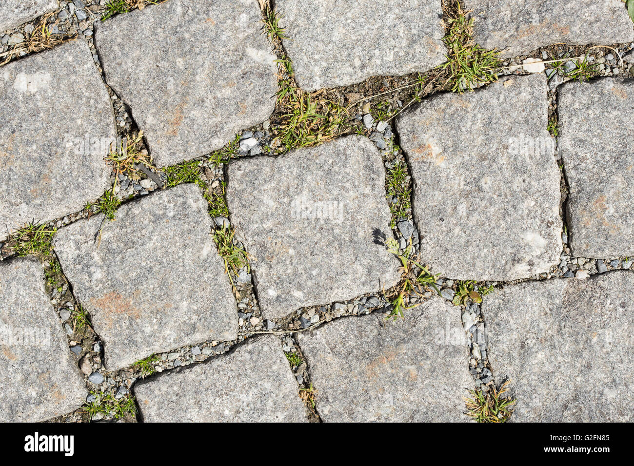 View On Grey Stone Pavement From Streets Of Rome Italy