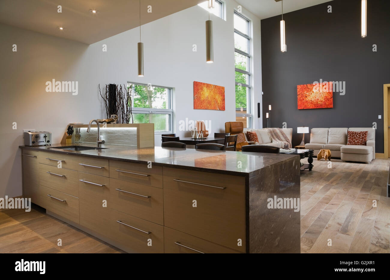 Island Dark Grey Marble Countertop Sink In Kitchen View Living Room Inside A Modern Cubist Style Residential Home Quebec Canada