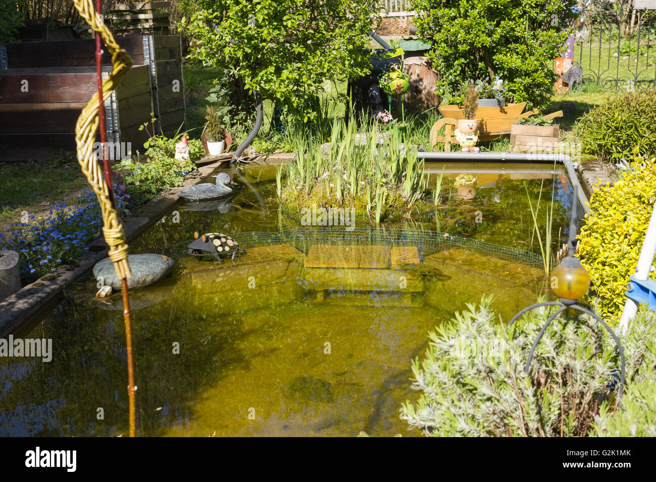 Gartenteich  Gartenteich, Garden pond Stock Photo, Royalty Free Image ...