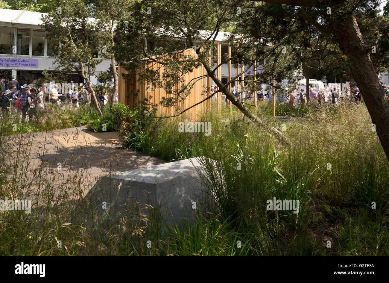 rhs chelsea flower show 2016 cloudy bay garden silver gilt medal winner design sam ovens - Garden By The Bay Flower Show