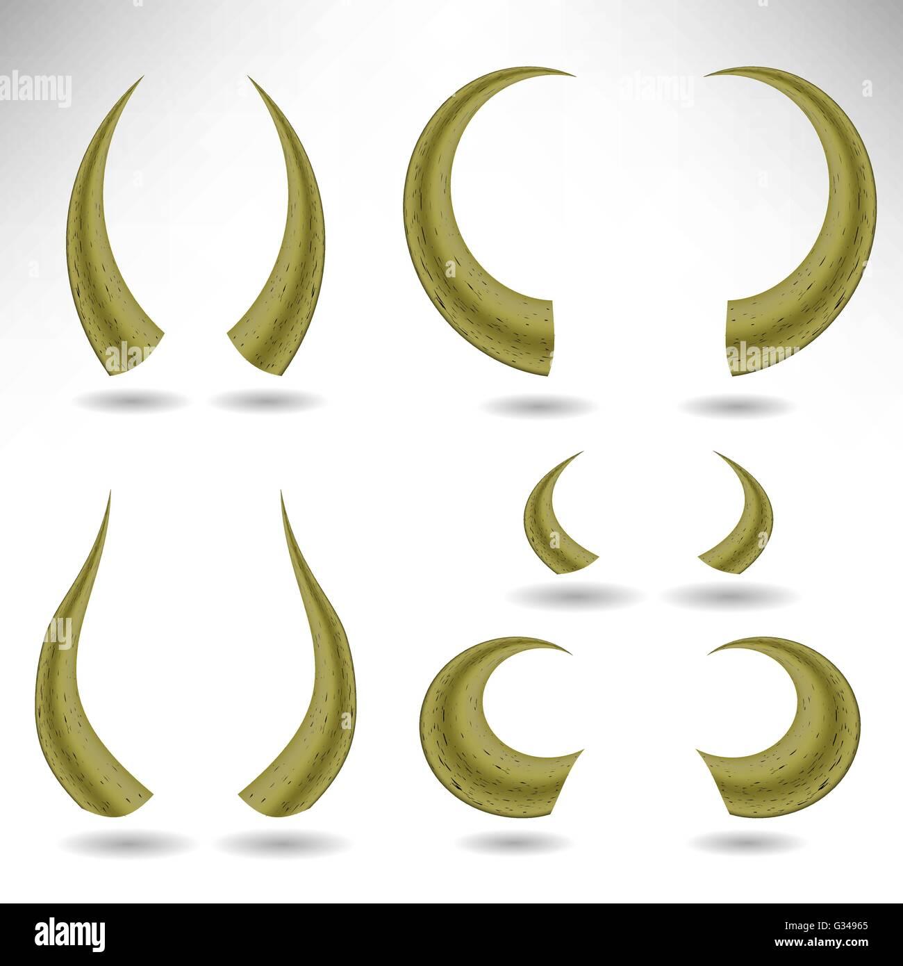 Animal Horns Isolated. Bull Horns Stock Photo, Royalty Free Image ...