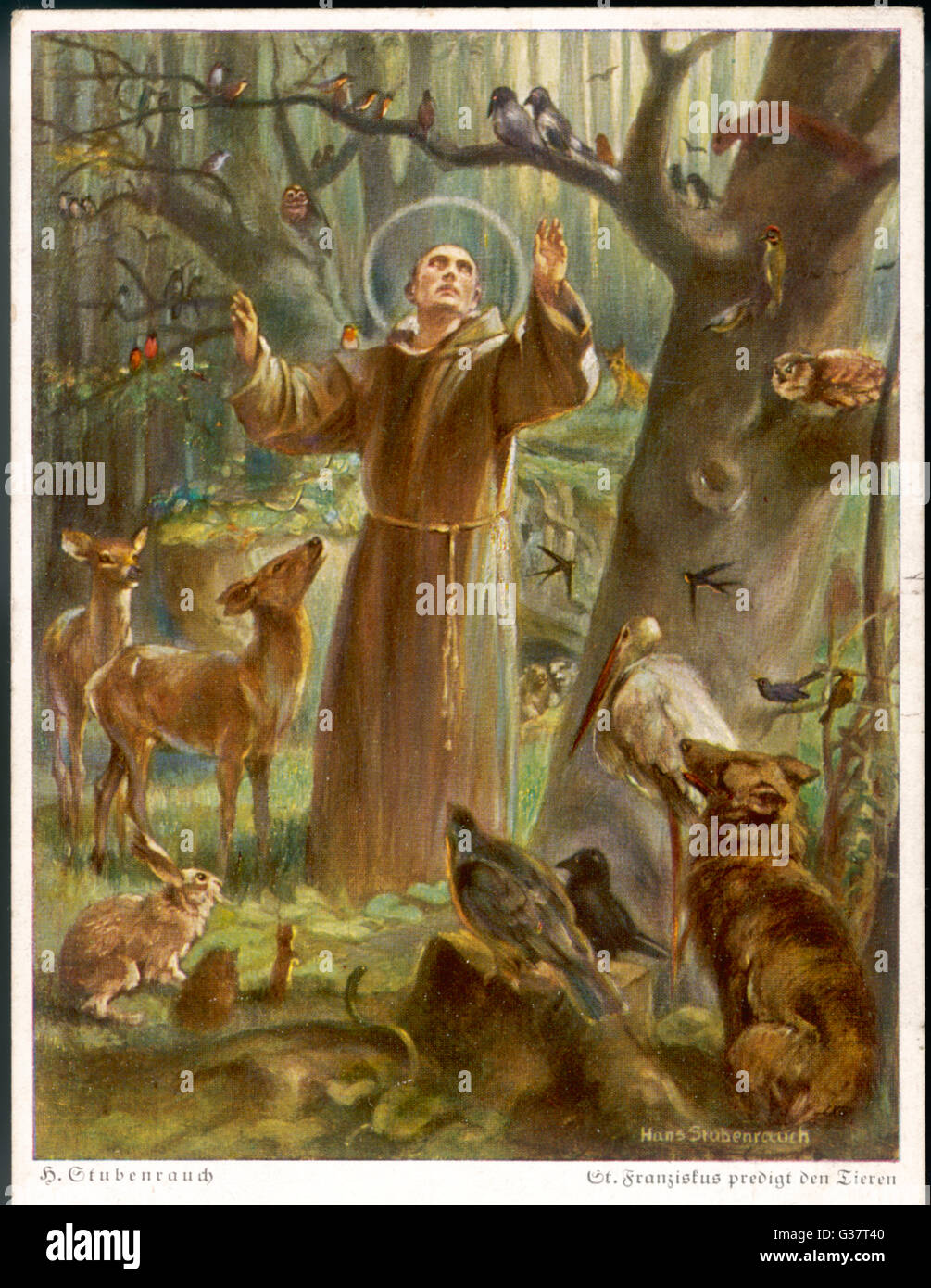 st francis assisi St francis of assisi church is a eucharistic family of catholic christians  nourished by the sacraments and guided by the holy spirit, we proclaim jesus  christ.