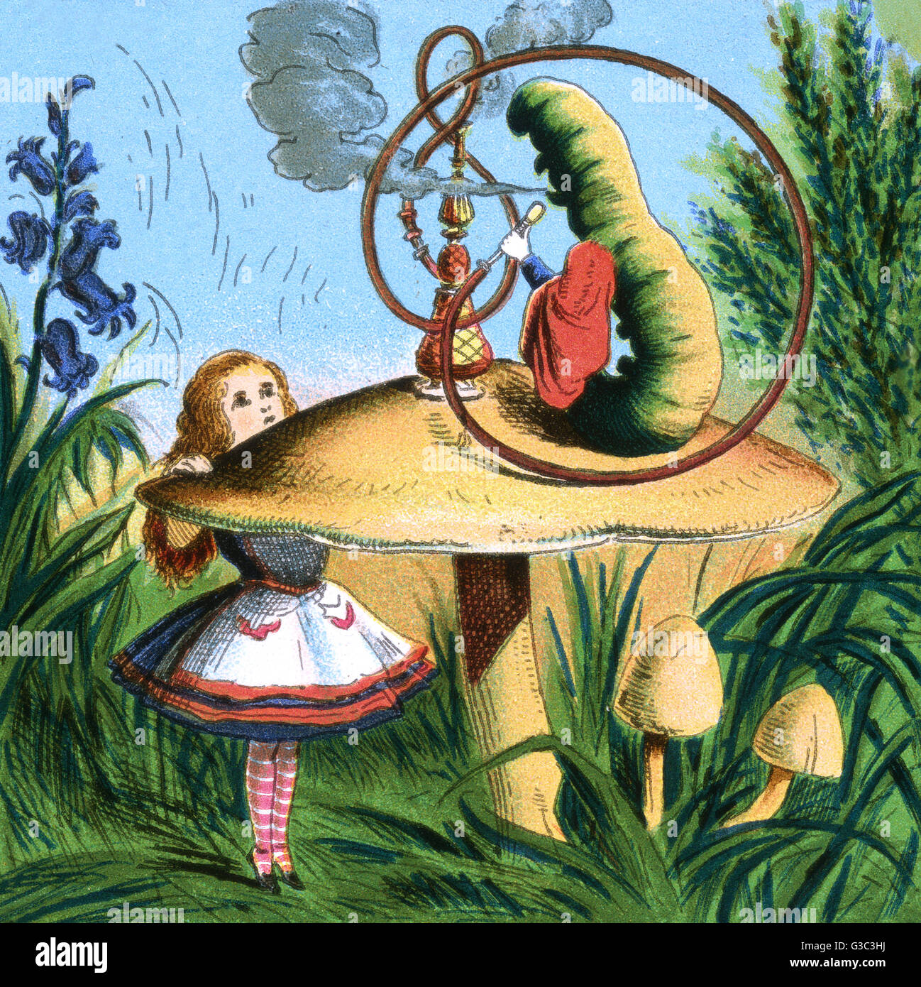 the caterpillar sitting on a mushroom at an alice in wonderland
