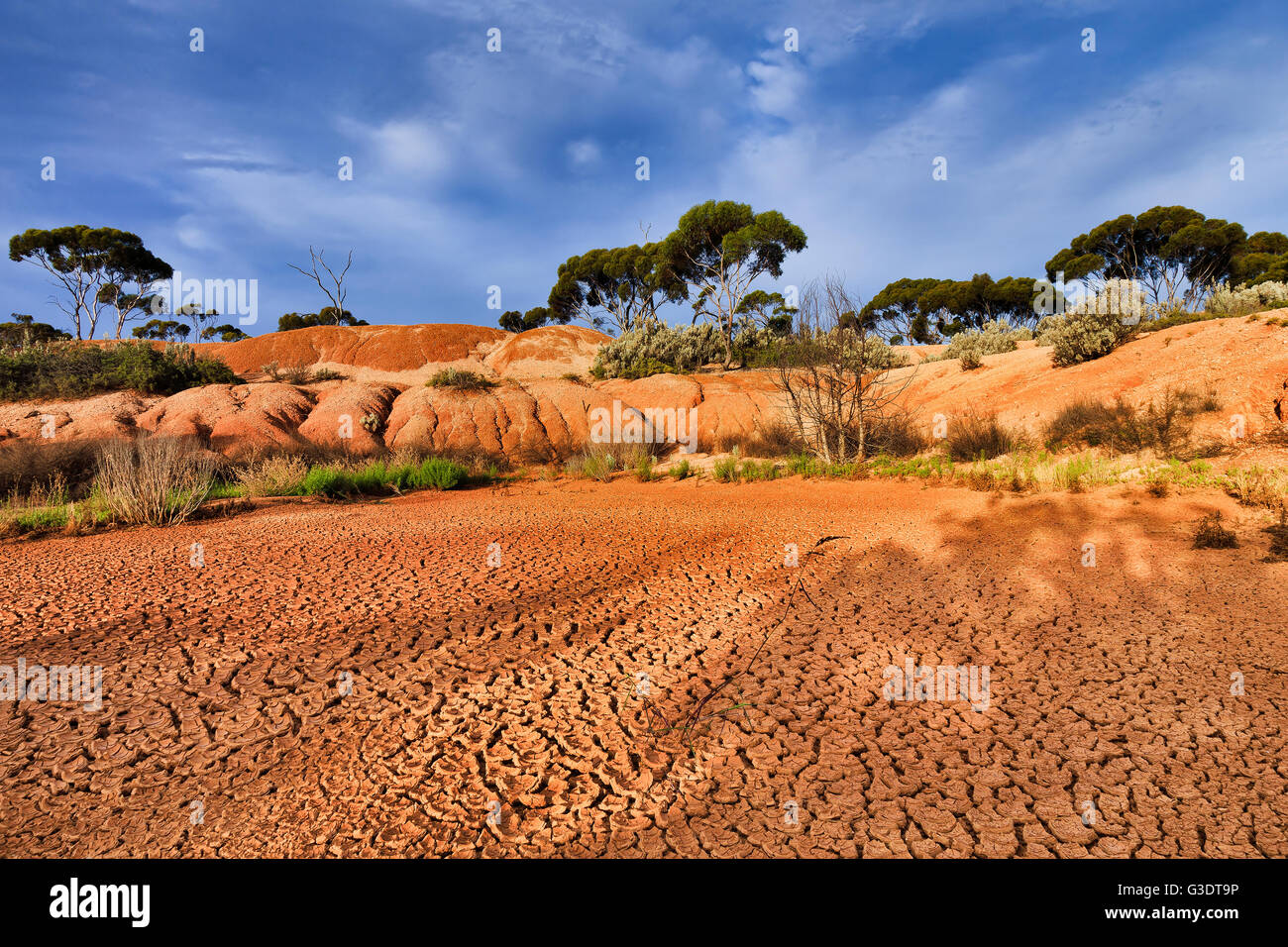 red draught arid soil of outback in Western Australia ...