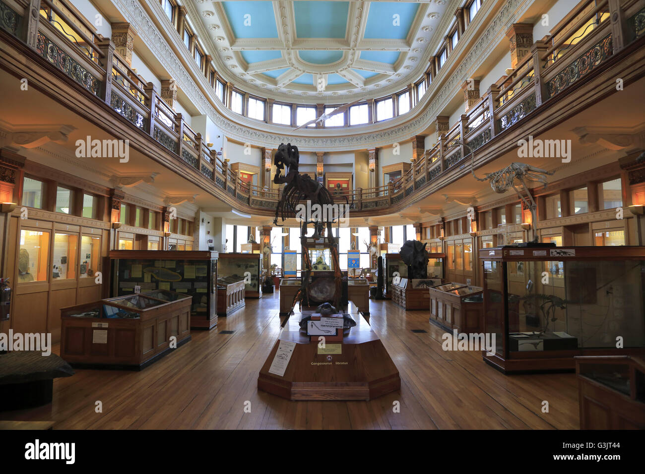 The Interior View Redpath Museum In McGill University Montreal