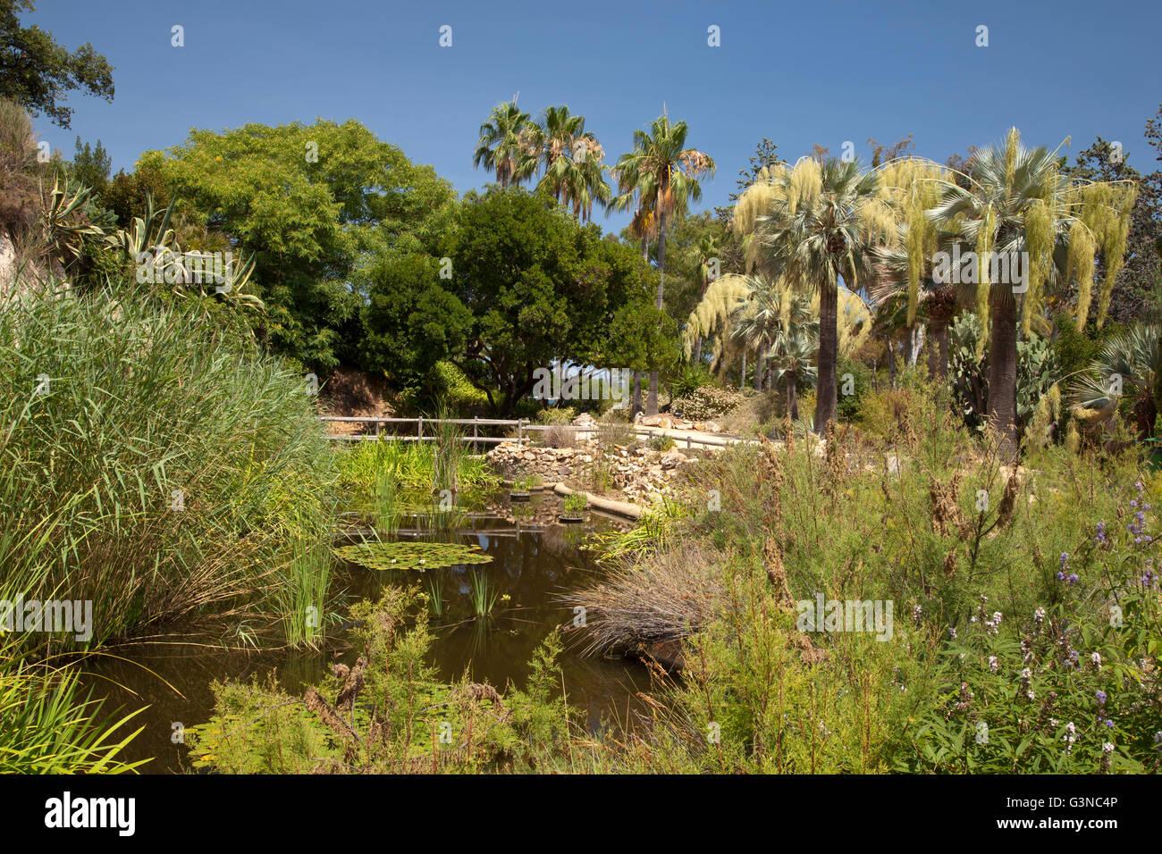 Jard Bot Nic Marimurtra Botanical Gardens Blanes La