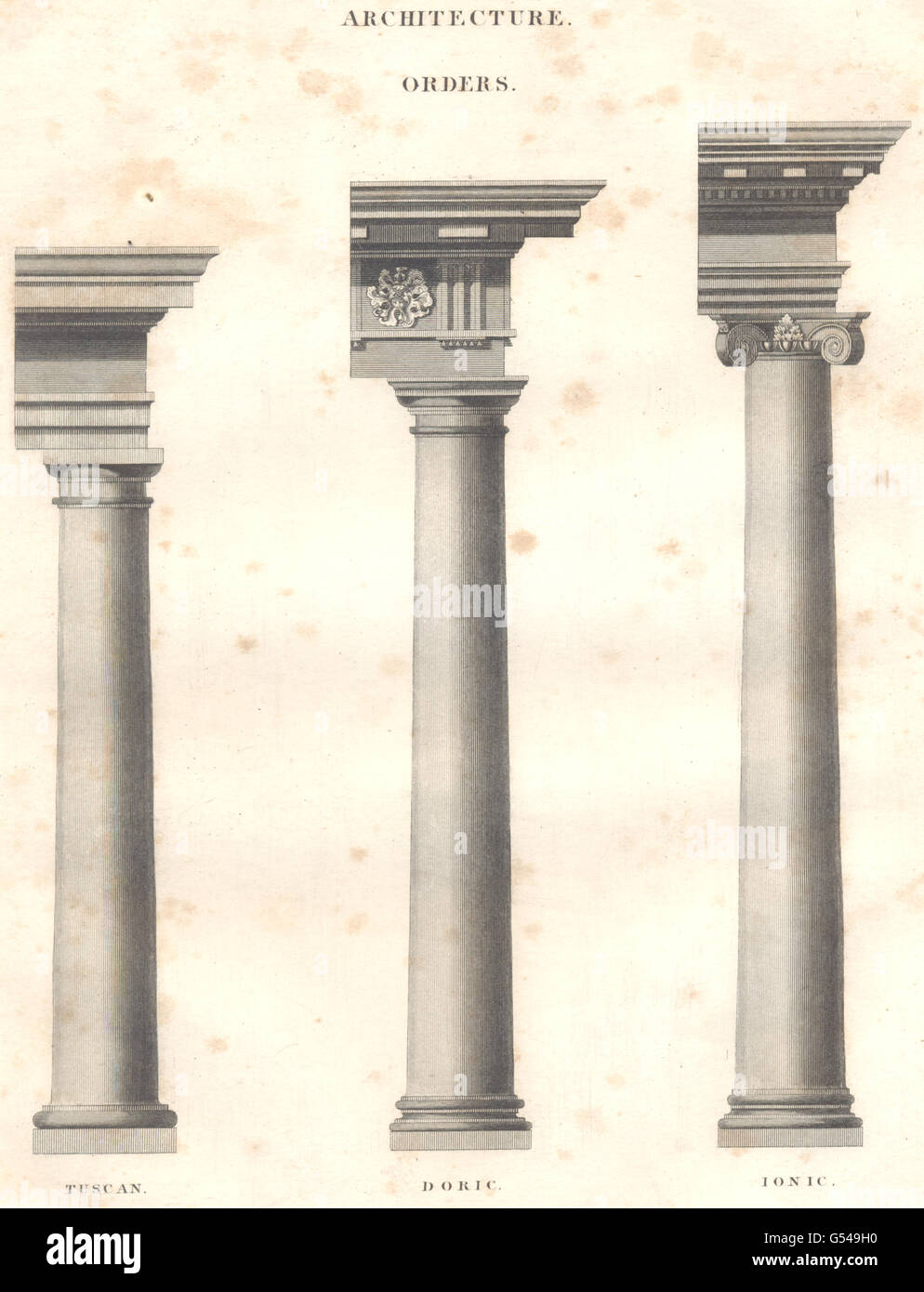 ARCHITECTURE ORDERS Tuscan Doric Ionic Columns Oxford Encyclopaedia 1830