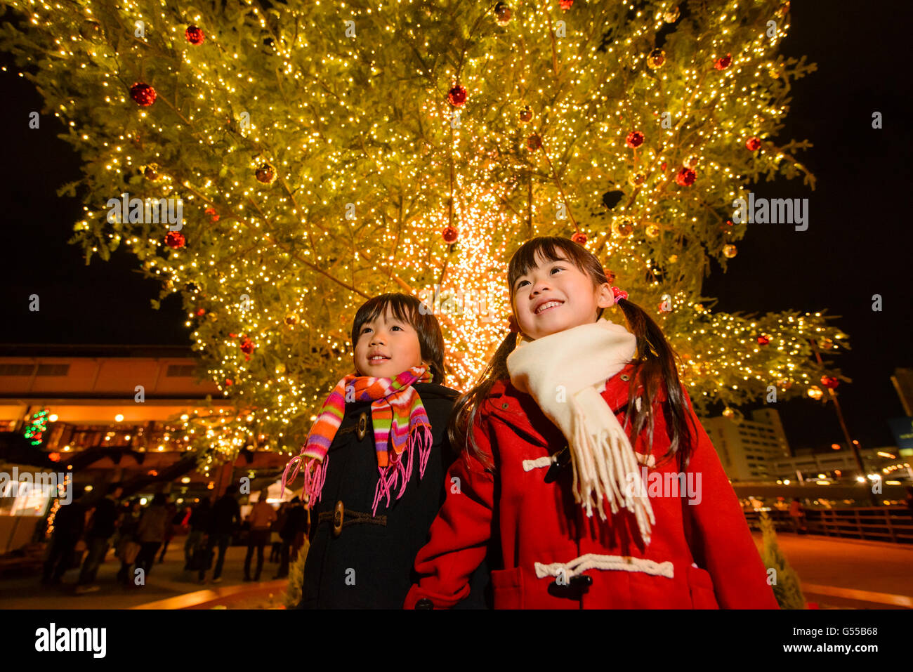Japanese Kids Under Outdoor Christmas Tree Stock Photo Royalty  - Japanese Christmas Tree