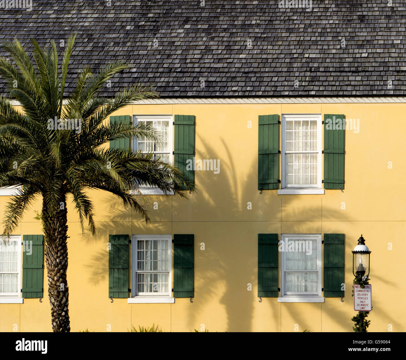 Old Style House Yellow With Green Shutters Palm Tree And