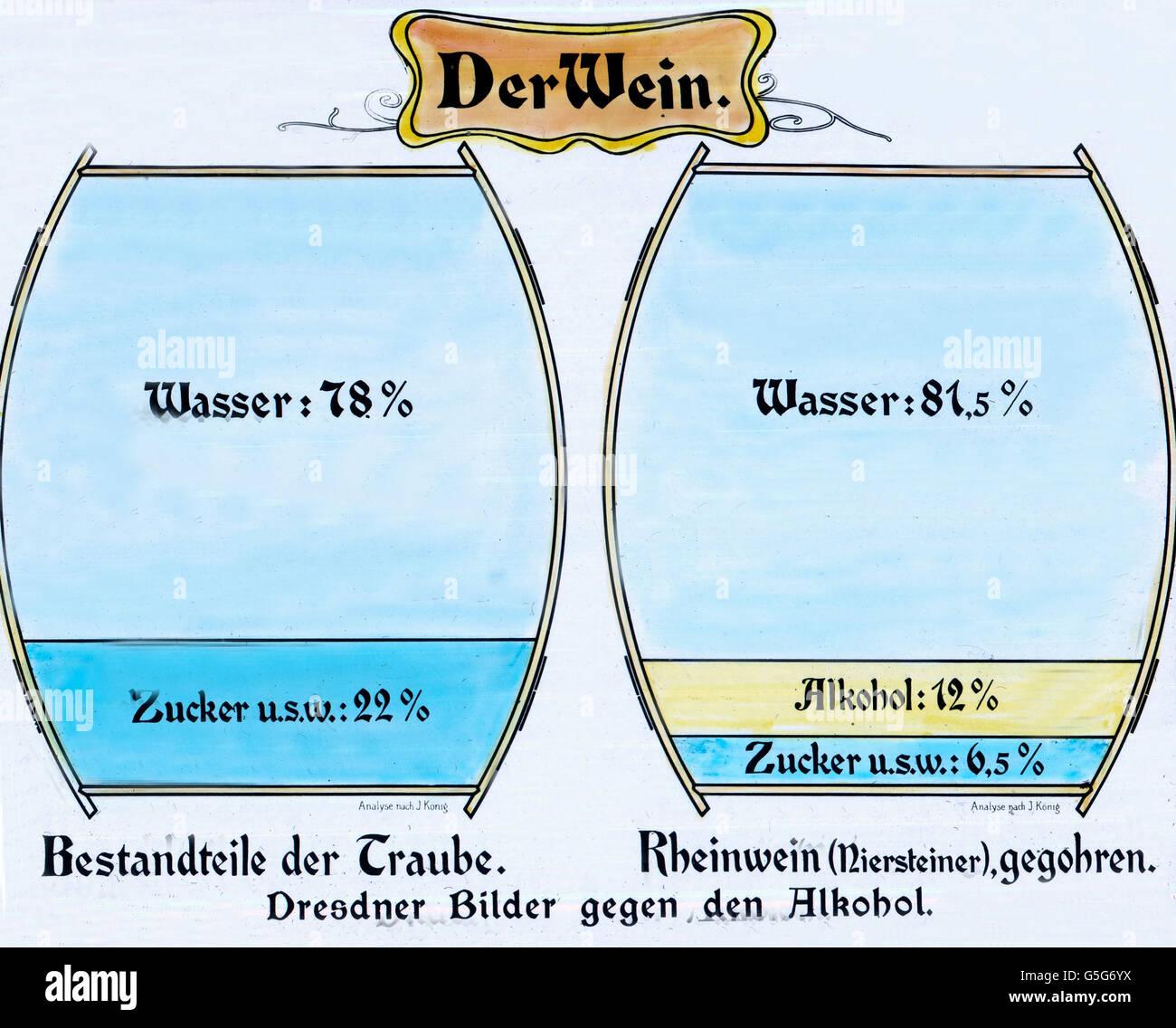 Schematische Darstellung der Bestandteile des Weins. Illustration of ...