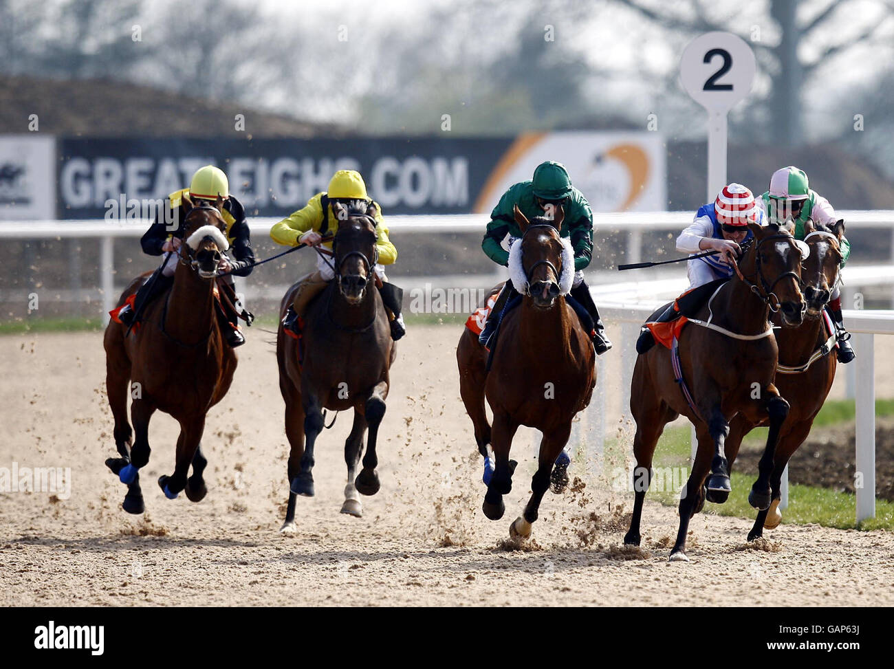 Horse racing invitation only day great leighs racecourse stock horse racing invitation only day great leighs racecourse stopboris Choice Image