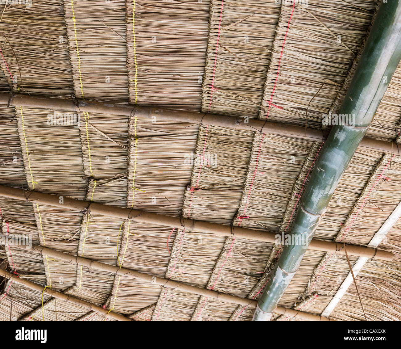 Thatch Roof Inside The Old Cottage Of Thai Farmer