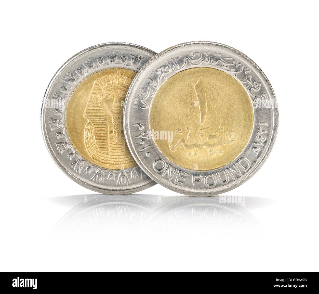 Front and back sides of one egyptian pound closeup isolated on white front and back sides of one egyptian pound closeup isolated on white background biocorpaavc Images
