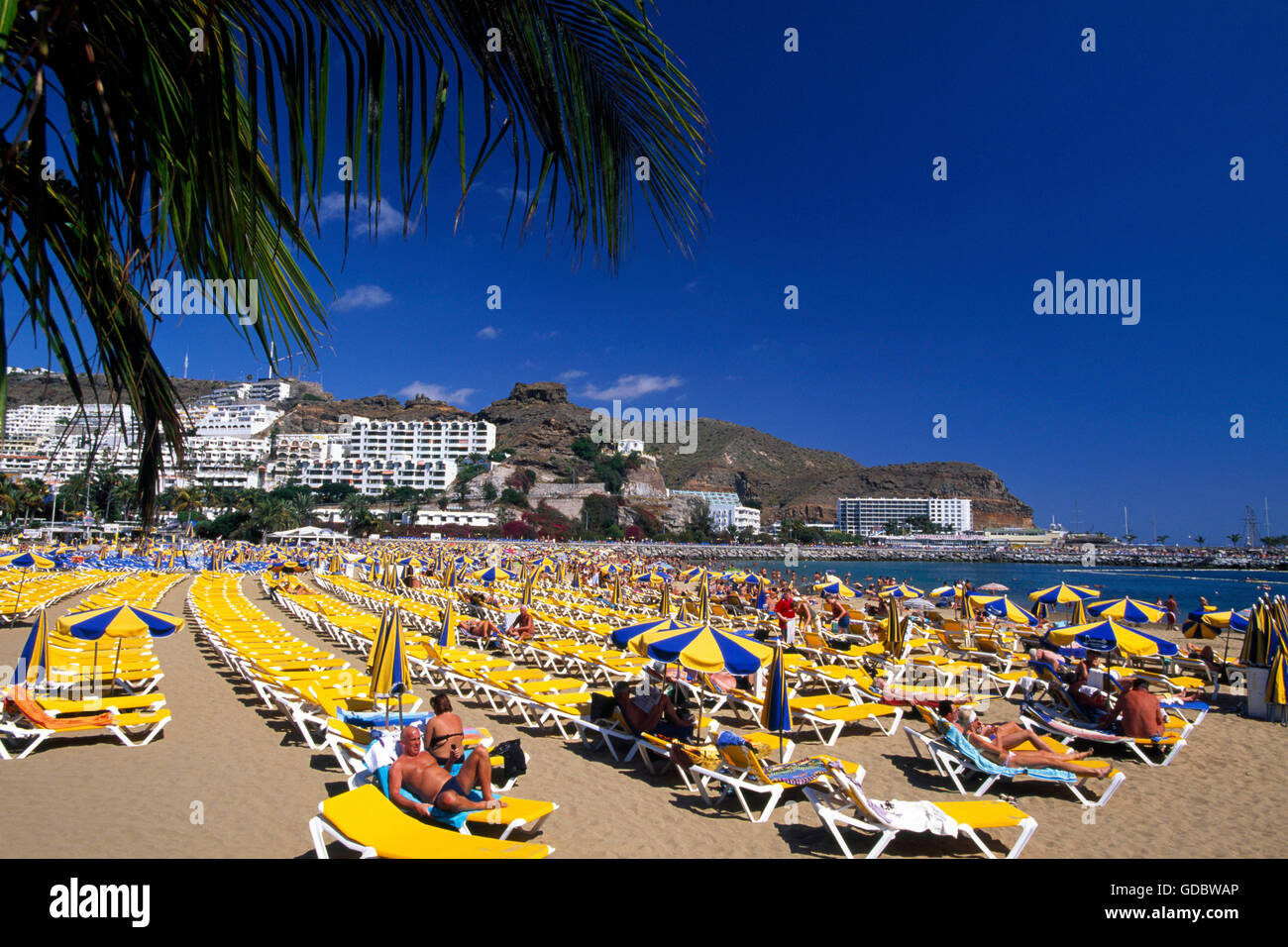 strand puerto rico gran canaria kanaren spanien stock photo royalty free image 111514110. Black Bedroom Furniture Sets. Home Design Ideas