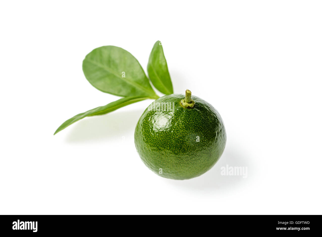 Small Green Lime On White, Tilt Shift Lens Stock Photo. Organizing My Kitchen. Kitchen Bench Seat With Storage. Modern Kitchen Floor Tiles. Top Kitchen Accessories. Red Stools For Kitchen. Kidkraft Modern Country Kitchen Set. Modern Tile Backsplash Ideas For Kitchen. Organize Kitchen Cupboards