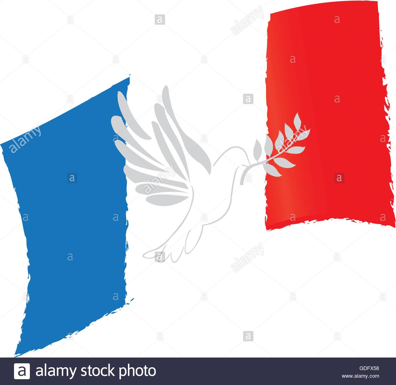 isolated french flag pigeon conceptual peace vector