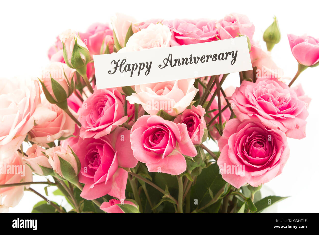 happy anniversary card with bouquet of pink roses stock