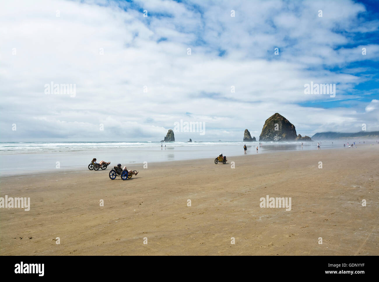 people-riding-recumbent-beach-bikes-near