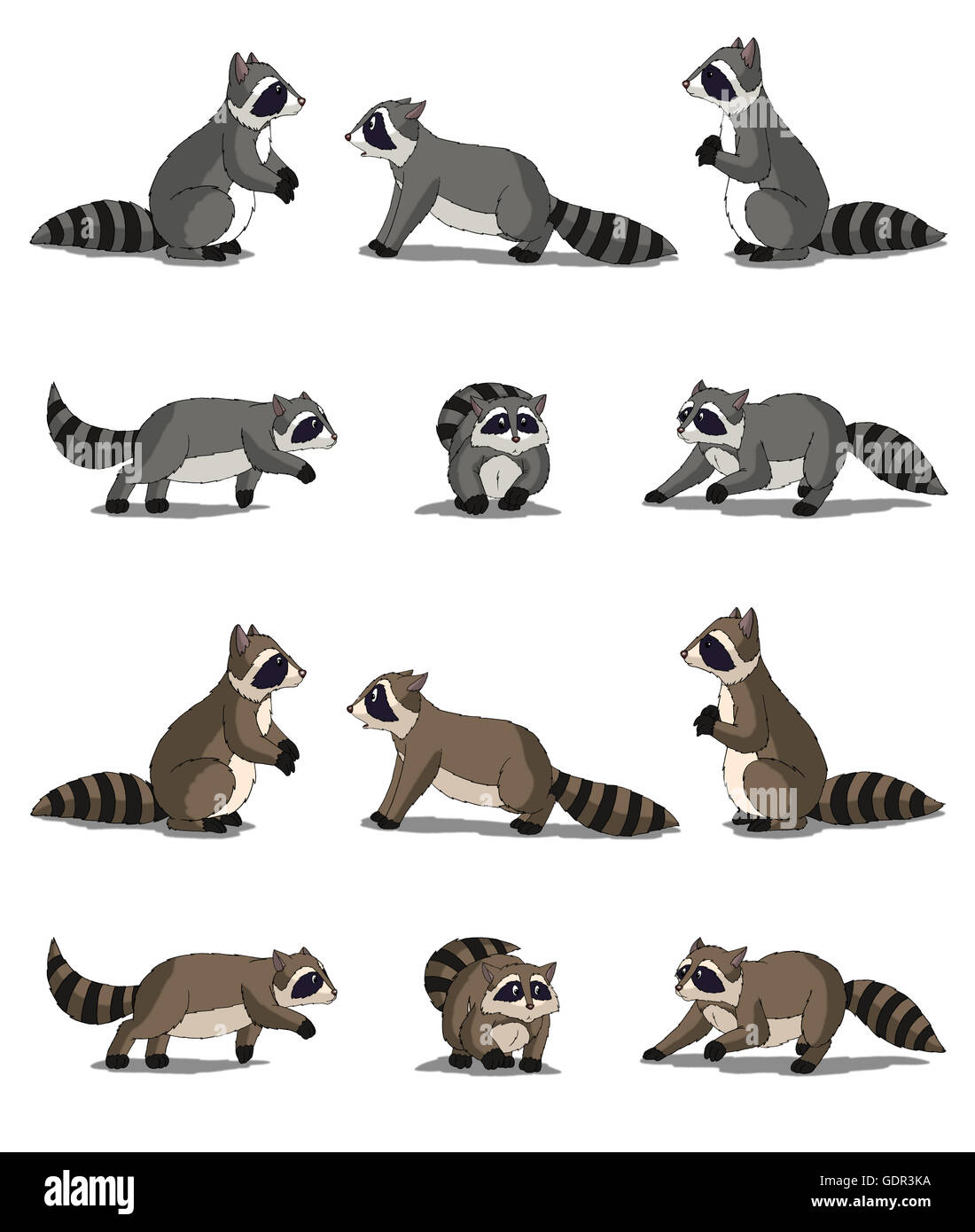 Set of Raccoon images Digital painting full color cartoon style