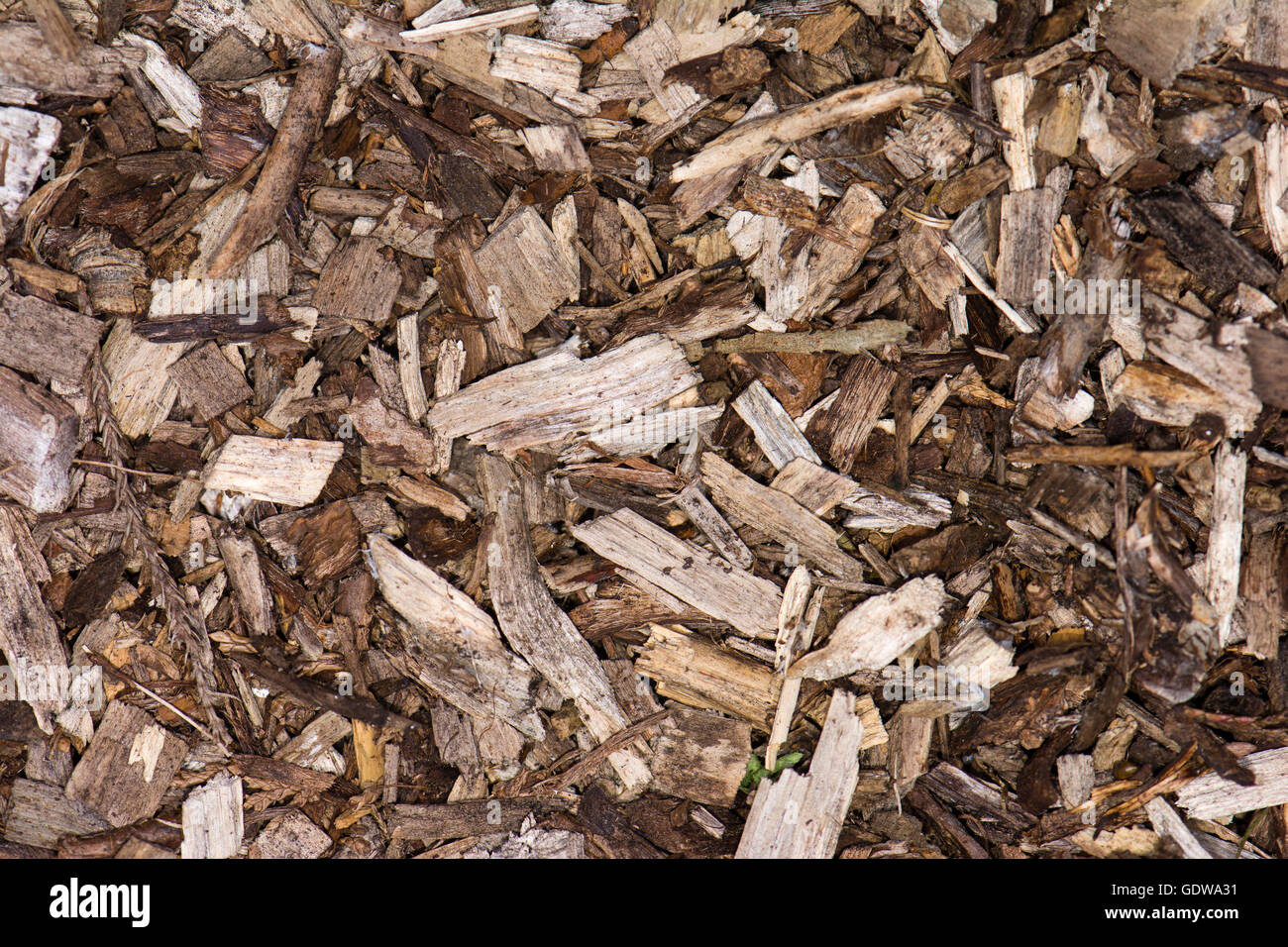 garden bark. Garden Mulch Made Up Of Mulched Wood And Bark Used To Suppress Weed Growth
