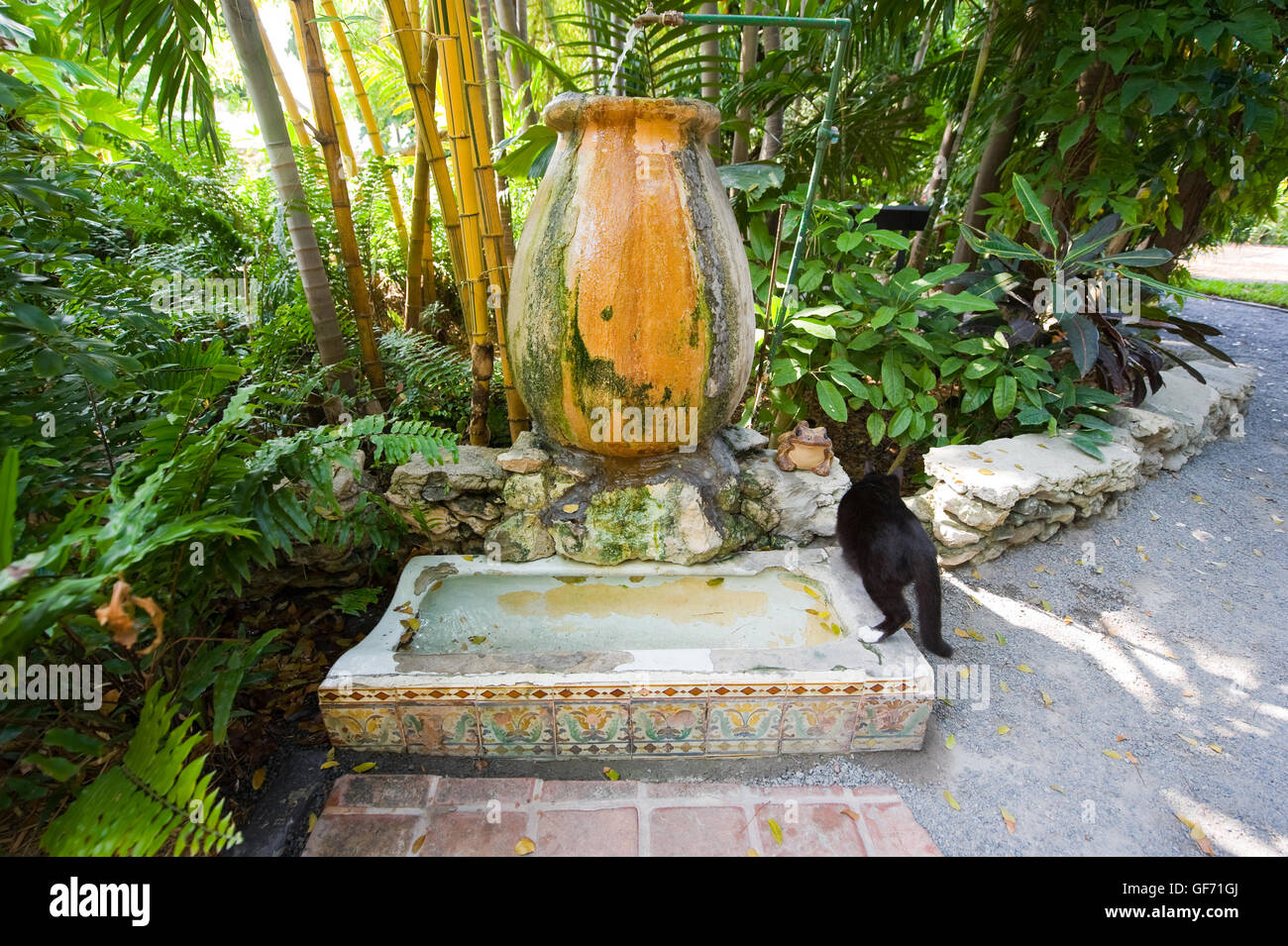 Former Urinal In The Garden Of The Ernest Hemingway House In Key West In  Florida.