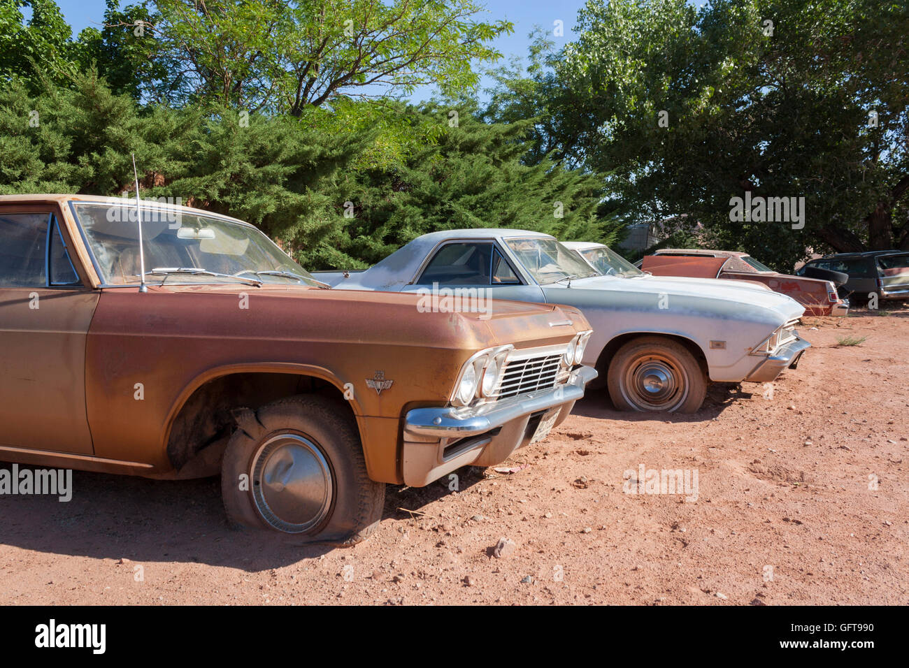 abandoned rusty classic 1960s cars in a junk yard USA Stock Photo ...