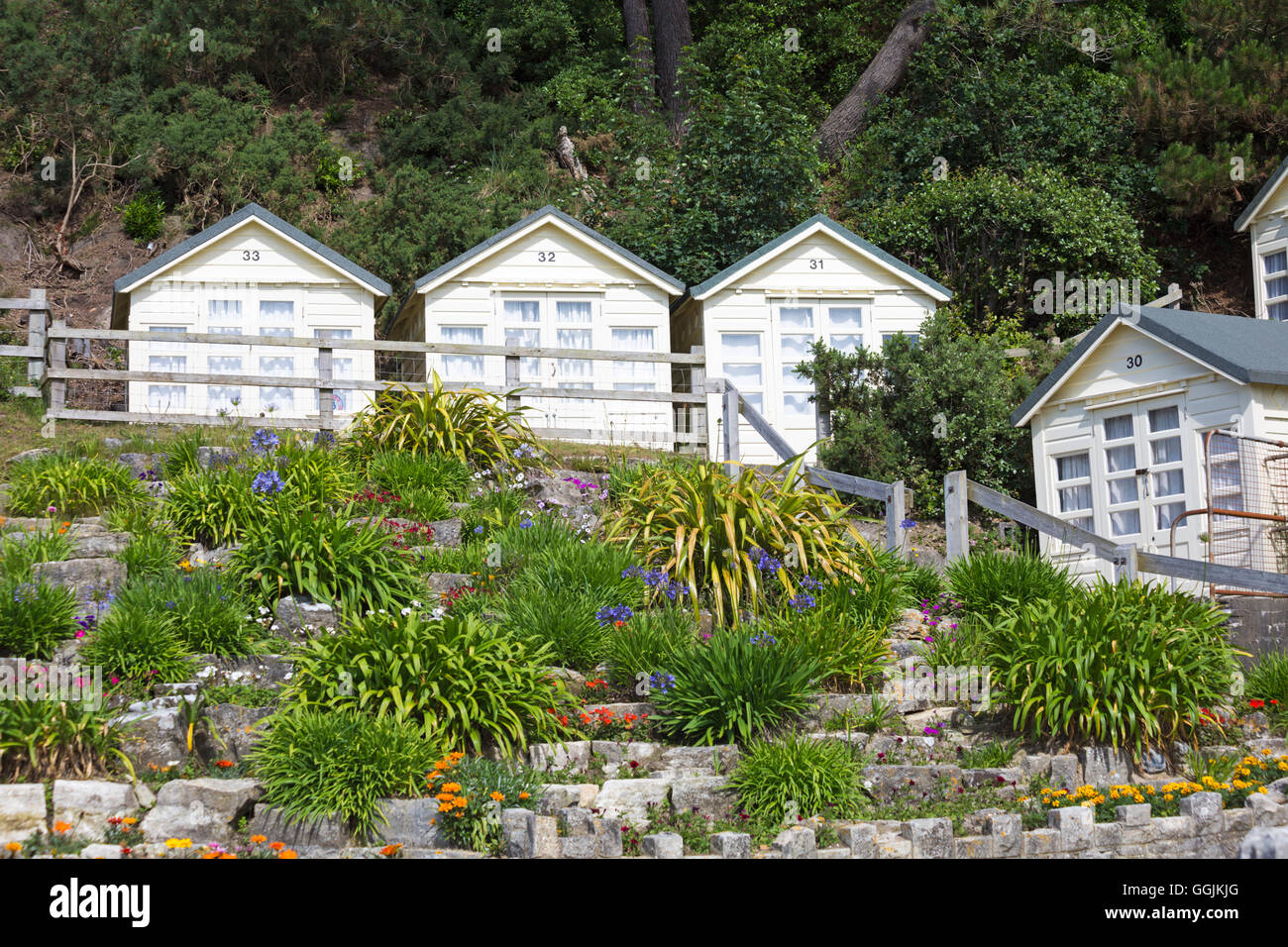 Beach huts at Canford Cliffs, Poole, Dorset in July Stock Photo ...