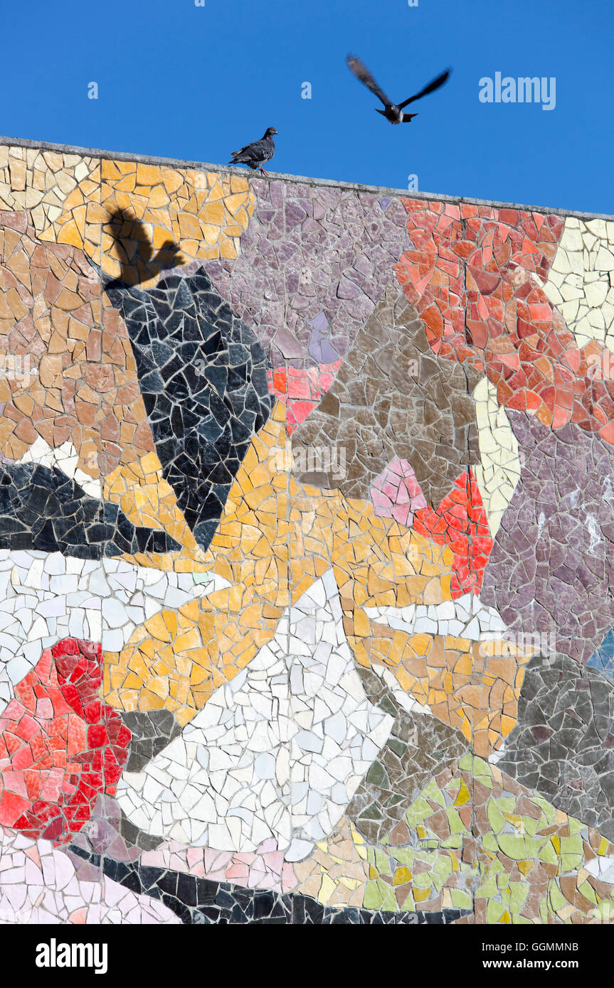 The Pigeon Flying Over Colorful Wall Of Mosaic In The City Of - Flying to seattle washington