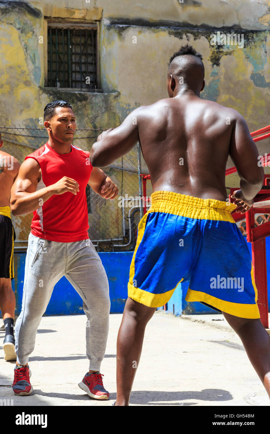 Young boxers training at the famous gimnasio de boxeo for Gimnasio de boxeo