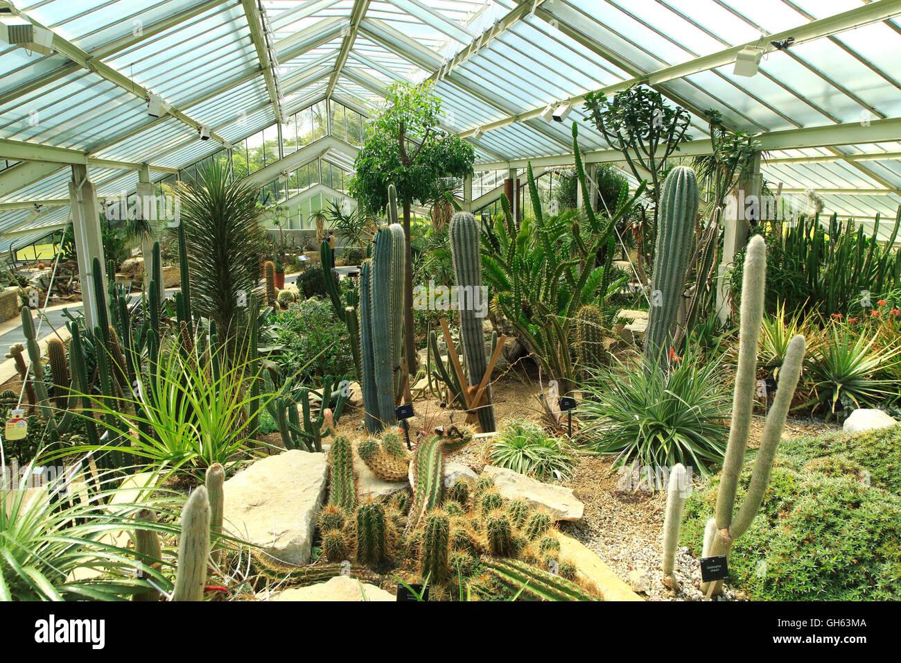 Royal botanical gardens greenhouse garden ftempo - Garden state orthopedics fair lawn ...