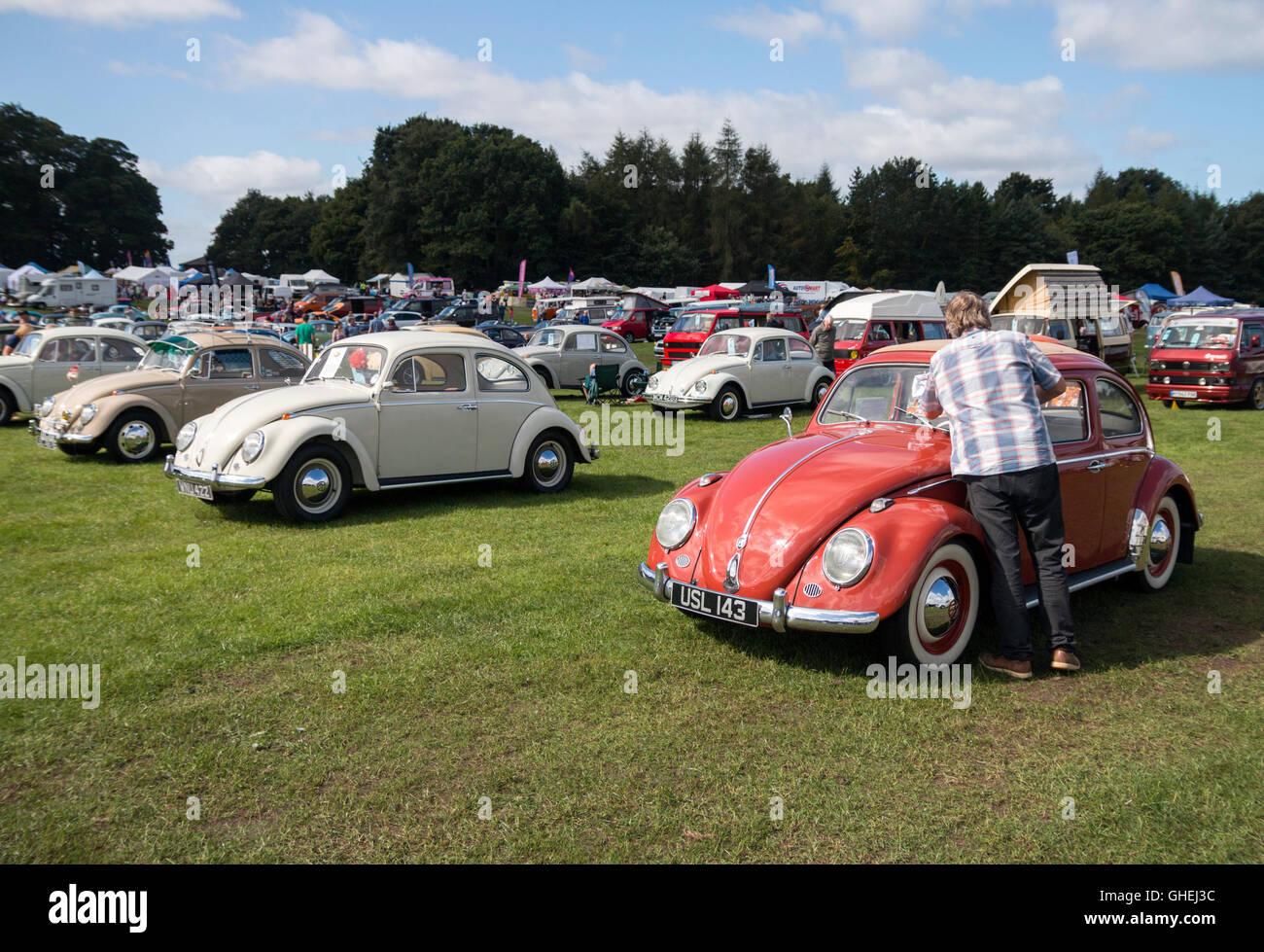 Tatton Park Vw Car Show