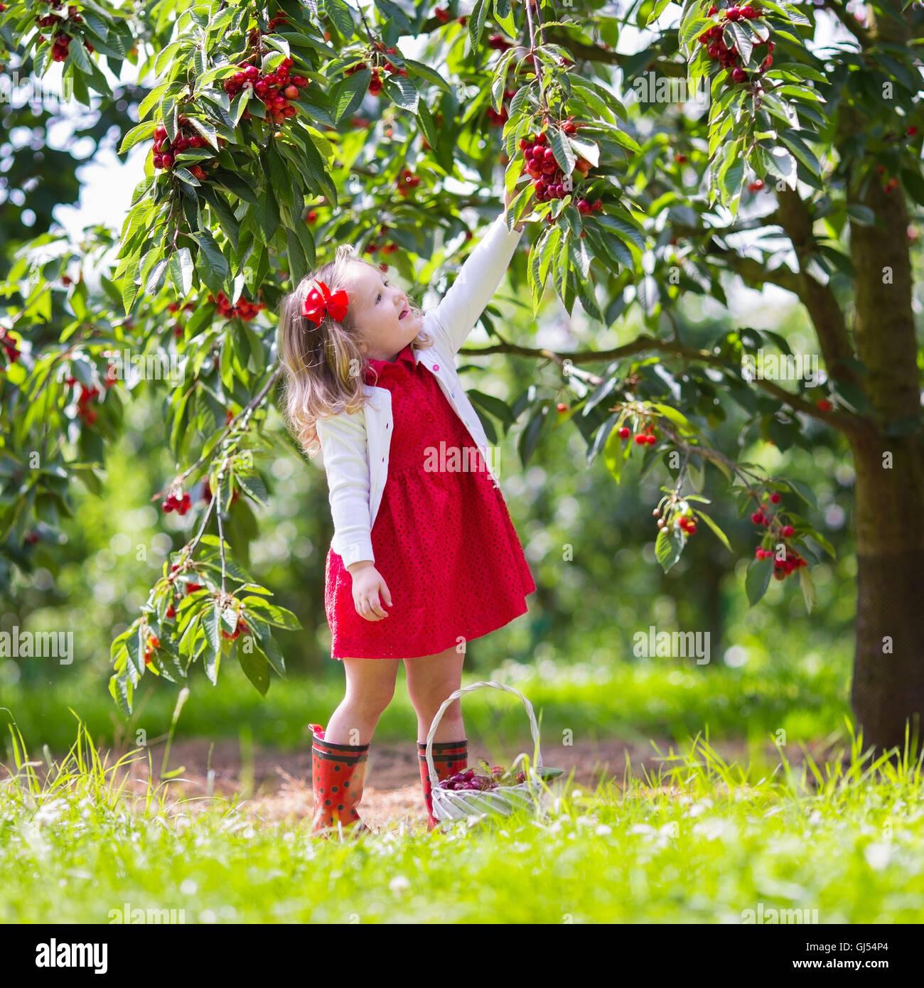 34   Cool fruit farm for Fruit Farm Photography  588gtk