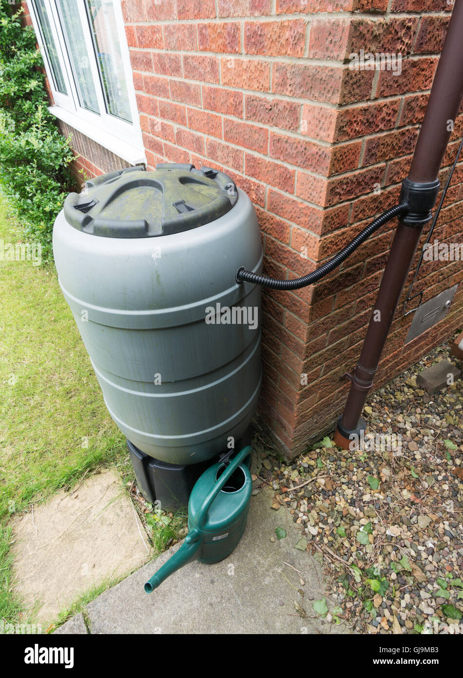 Garden Rainwater Collection And Storage System, With Rainwater Diverter,  Water Butt And Watering Can