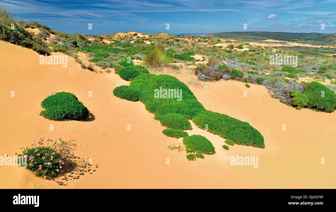 Portugal Algarve Sand Dunes With Coastal Vegetation In The - Portugal vegetation map