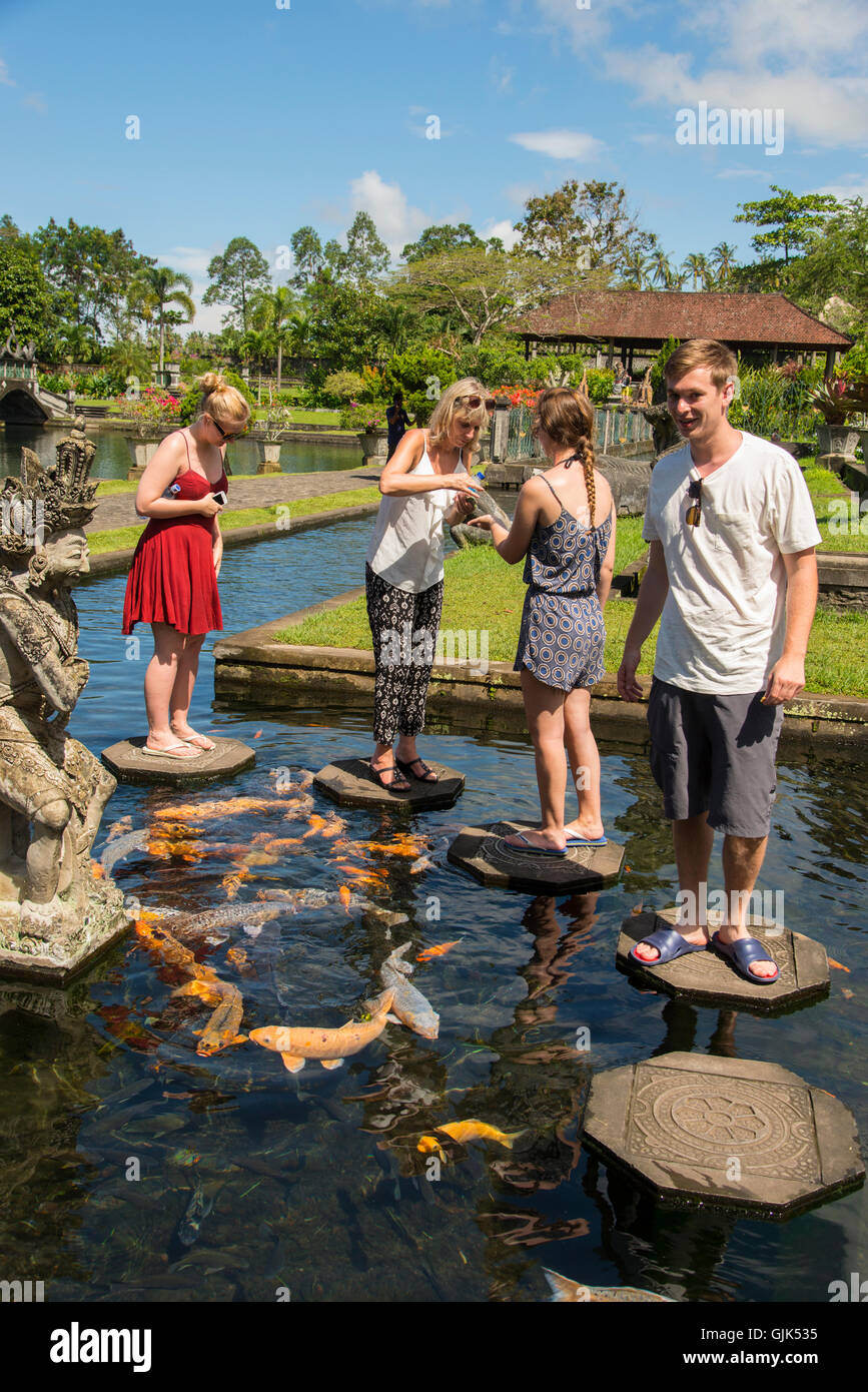 Tirta Gangga Royal Water Garden: Feeding The Fish At Tirta Gangga Royal Water Garden, Bali