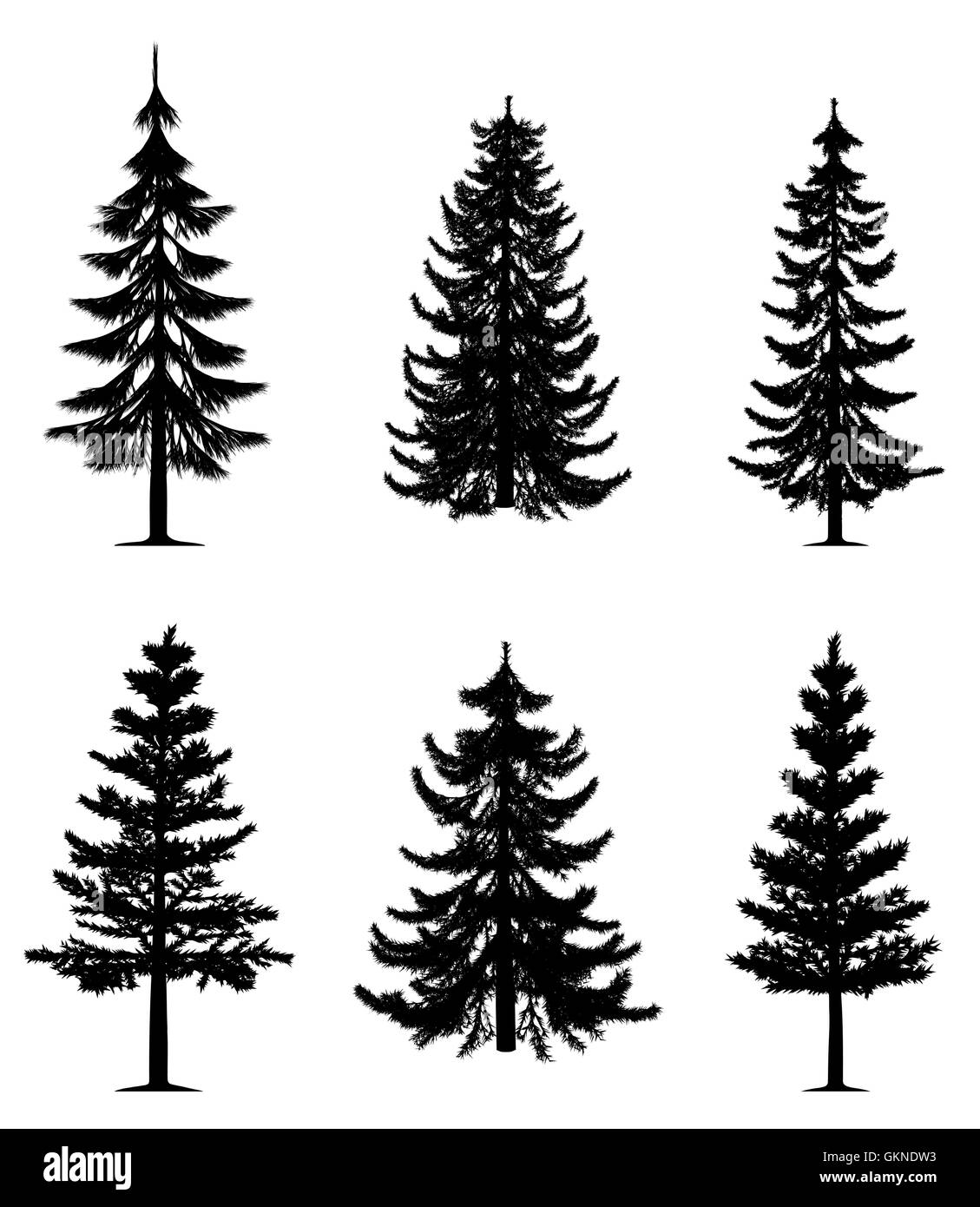 Tree Trees Pine Fir Conifer Silhouette Christmas Vector