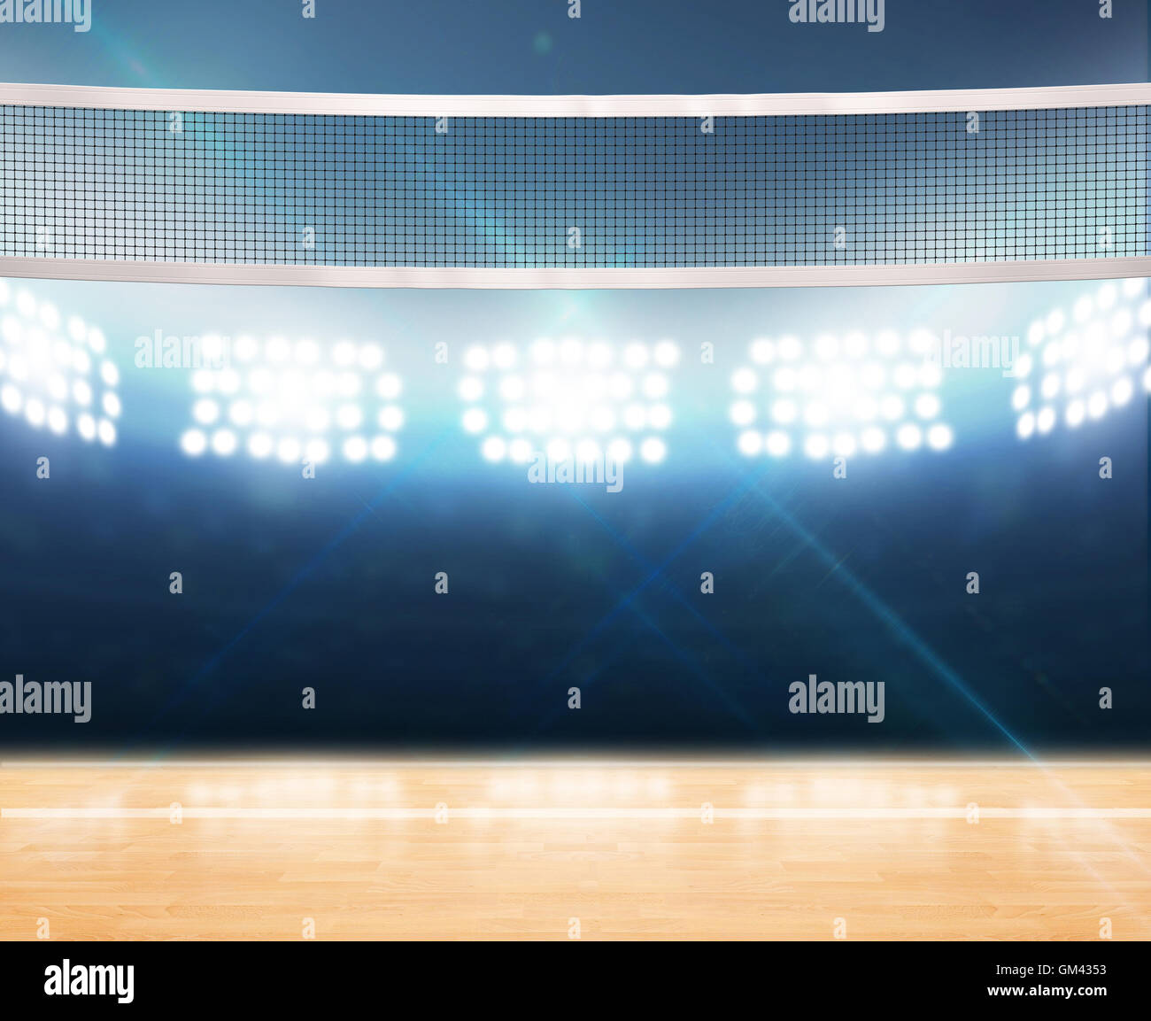 A 3D rendering of an indoor volleyball court with a net on a wooden ...