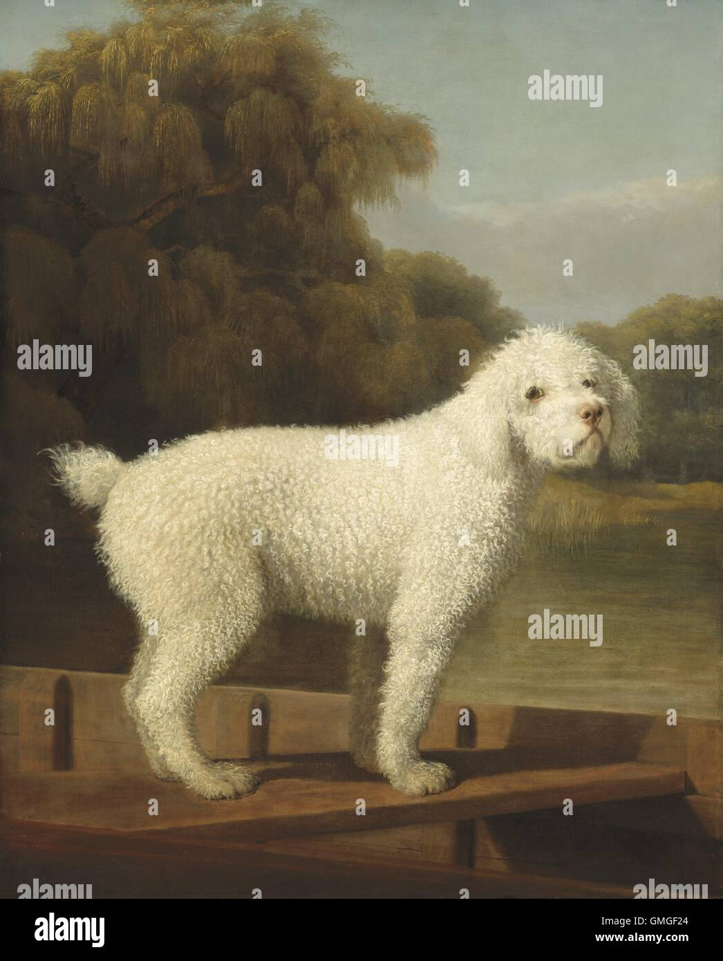 Oil Painting Of Poodle