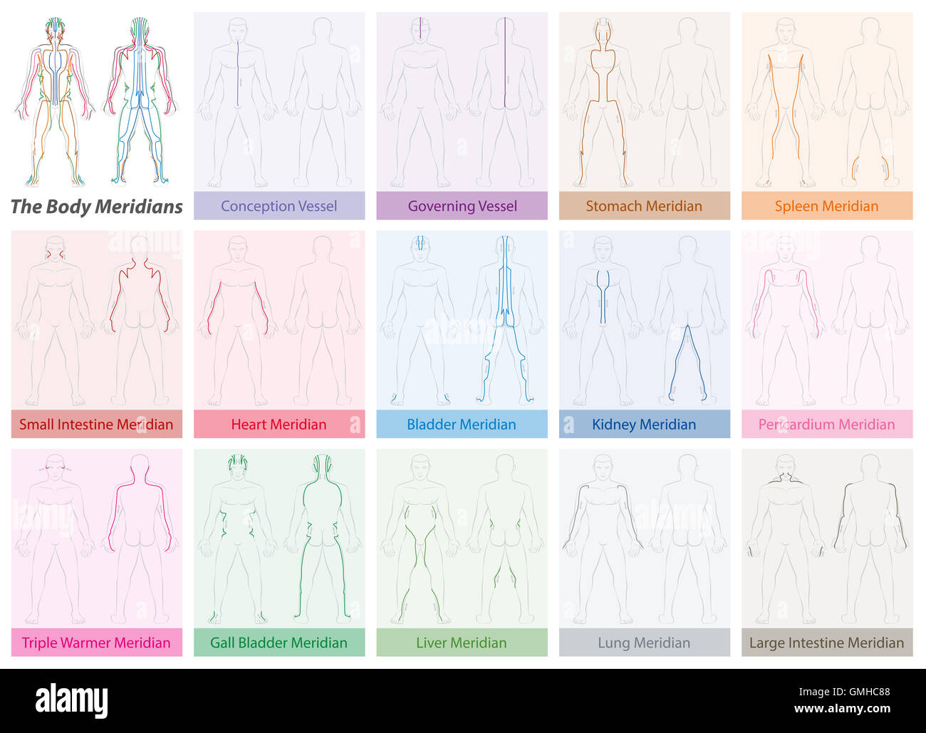 Body meridian chart with names and different colors traditional body meridian chart with names and different colors traditional chinese medicine nvjuhfo Images