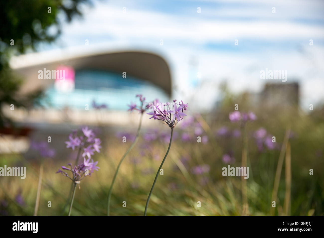 UK Weather Beautiful At Midday Olympic Park Copyright Carol Moir Alamy Live News